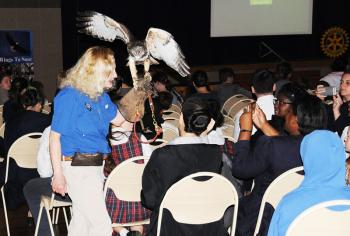 Dale Kernahan Co Director Of Wings To Soar Shows The Crowd At Patterson Area Civic Center A Red Tailed Hawk During Wednesday S Presentation Group